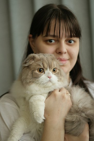 http://camelia-cats.narod.ru/kina.jpg